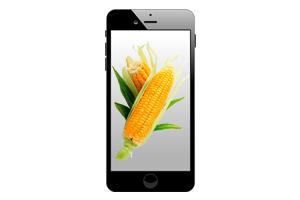 Перевод через мобильный Кукуруза